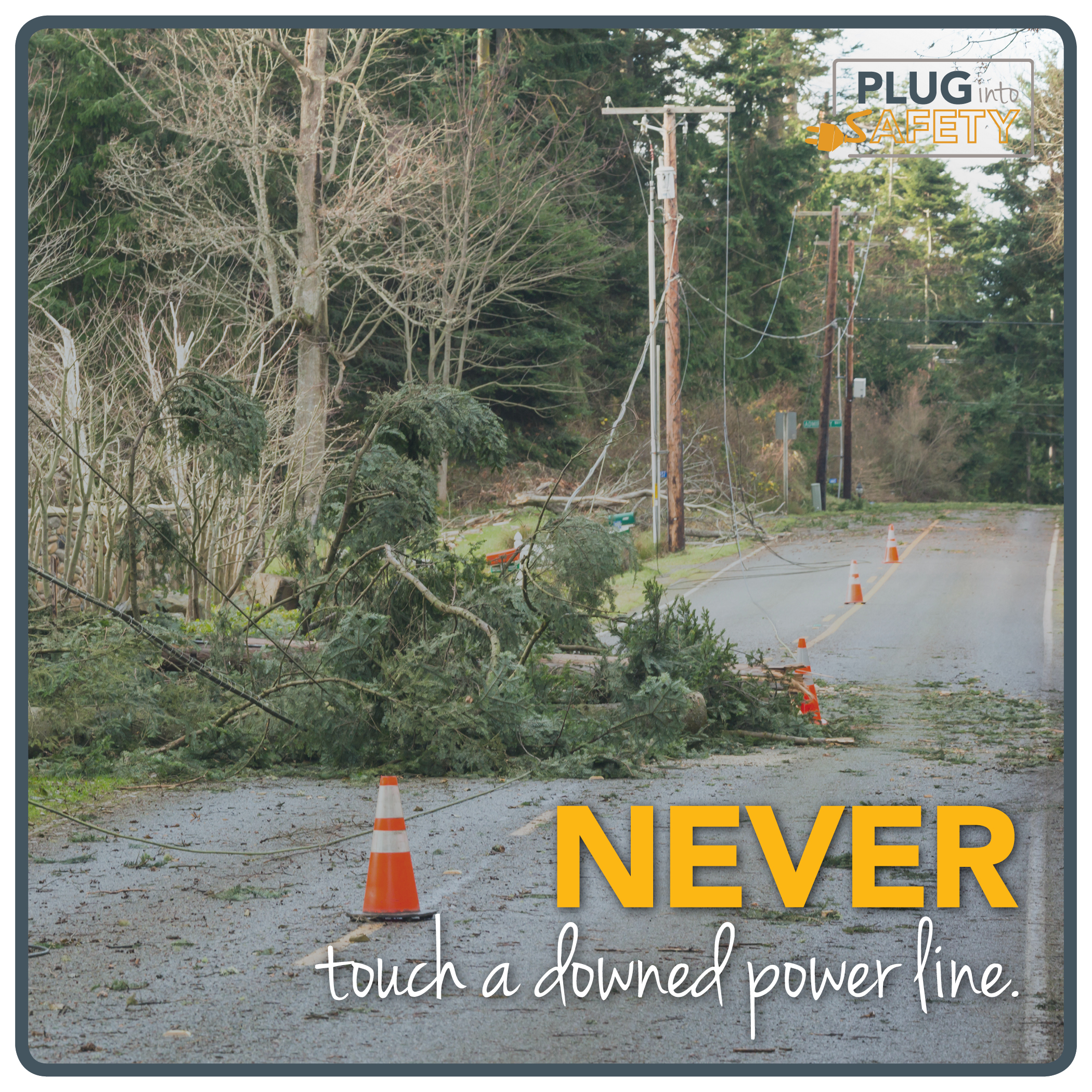 Never touch a downed power line.